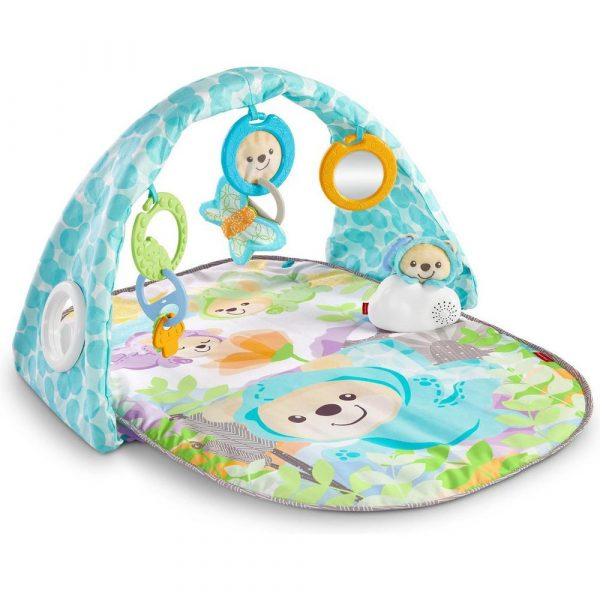 fisher-price-dyw46-butterfly-dreams-musical-playtime-gym